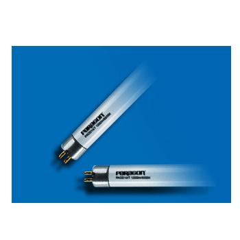 Bóng đèn huỳnh quang Paragon PFLE T5
