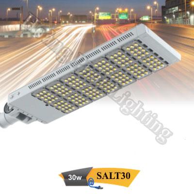 Đèn đường Led cao cấp 30W SALT30 Duhal