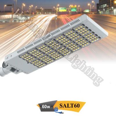 Đèn đường Led cao cấp 60W SALT60 Duhal