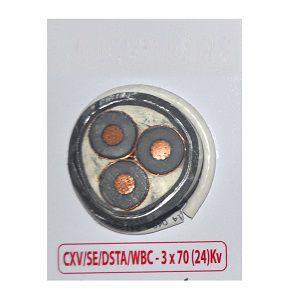 Cáp trung thế CXV/SE/DSTA 3x70 Cadivi
