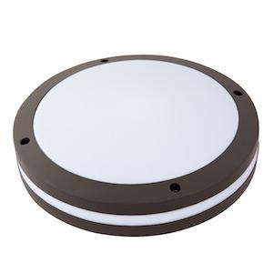Đèn Led ốp trần chống bụi (S) D LN CB02L/12W Rạng đông